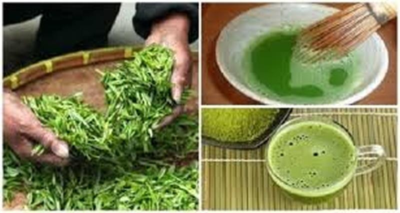 Blog - Post - Dieta cu ceai verde